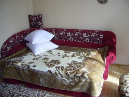 Apartments rent Morshyn 14, Upa St.